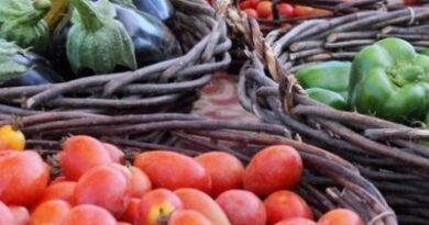 Хранение в погребе овощей