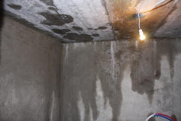Течи в подвале