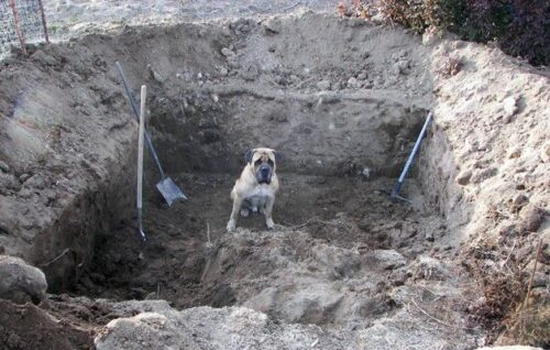 Котлован под погреб
