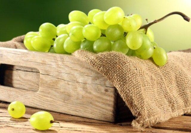 Хранение Винограда В Погребе Зимой