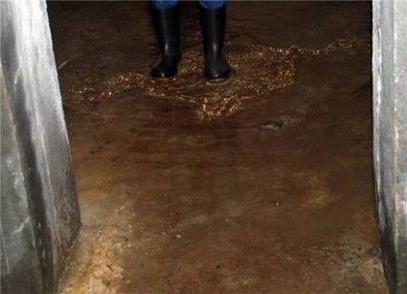 При затоплении подвала вынести воду черпаками и ведрами не получится.