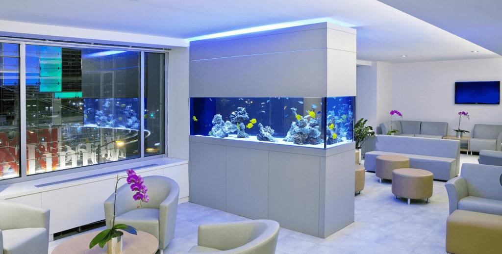 Модные тенденции в интерьерном дизайне: перегородка с аквариумом
