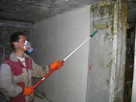 Сырость и плесень в подвале
